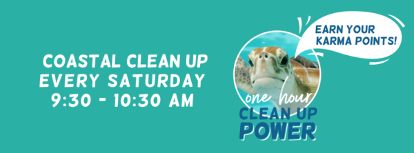 One Hour Clean Up Power