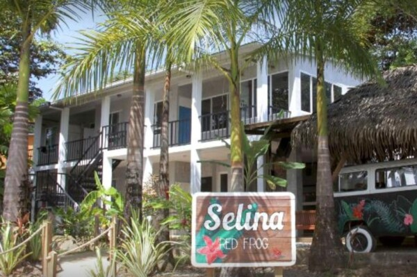 Selina Hostel Red Frog Isla Bastimentos