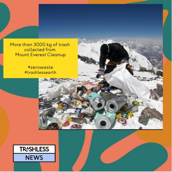 More than 3000 kg of trash collected from Mount Everest cleanup