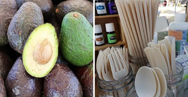 Company Turns Avocado Pit Waste Into Biodegradable Straws and Cutlery APRIL 15, 2019 AT 4:46 PM