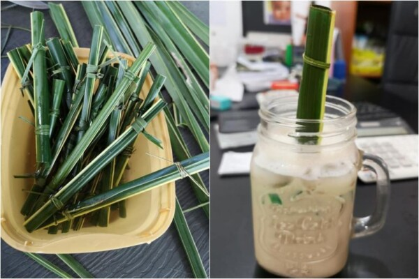 Cafe in the Philippines Now Uses Straws Made Out of Coconut Leaves to Cut Plastic Waste
